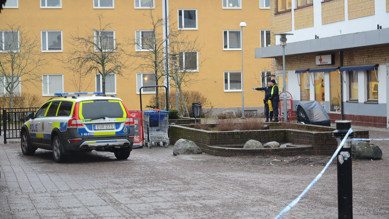 Olle Andersson, Prstbolsgatan 18, Linkping | unam.net